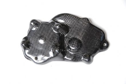 Lightech Carbon Fibre Electric Cover Kawasaki ZX6R / 636 2009>